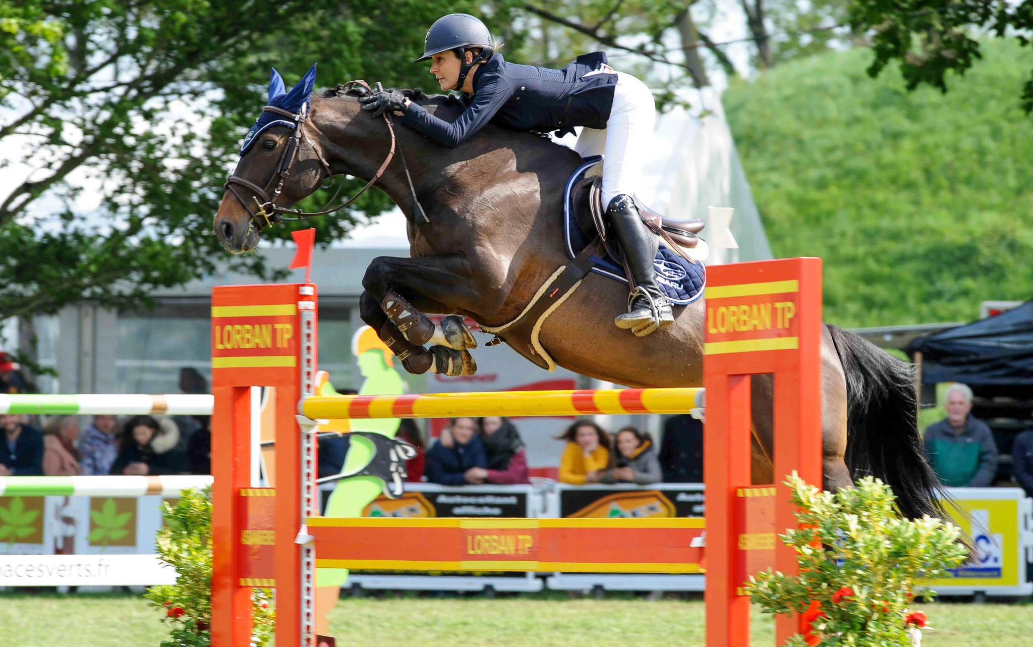 jumping-maubeuge-concours