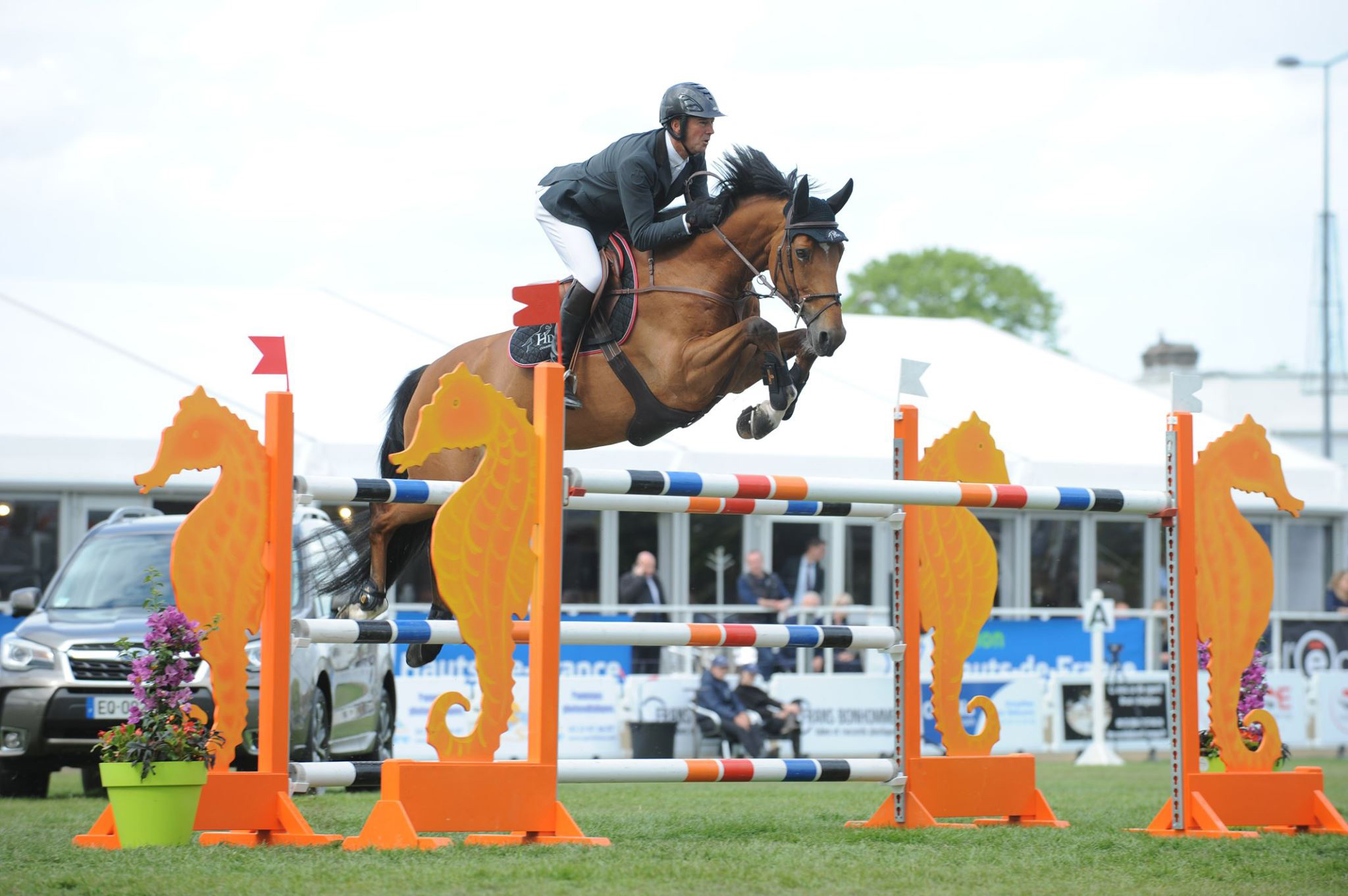 jumping-maubeuge-concours-image